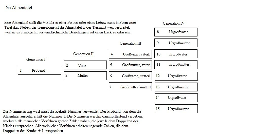 Stammbaum Grafiken und Diagramme